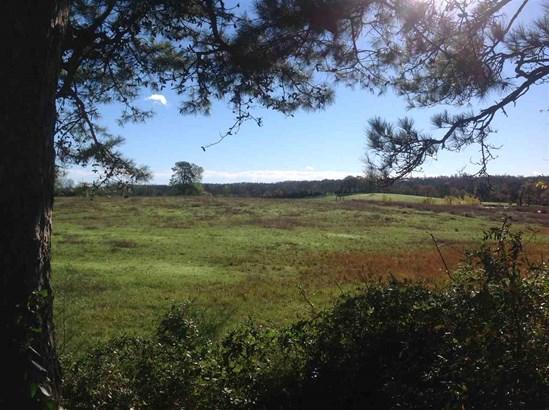 Lots and Land - Royal, AR (photo 1)