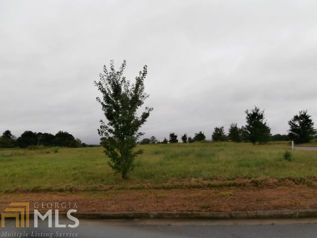 Lots and Land - Adairsville, GA (photo 2)