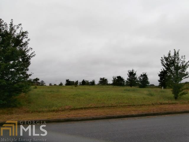 Lots and Land - Adairsville, GA (photo 3)