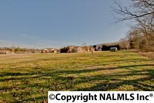 Lots and Land - HARVEST, AL (photo 1)