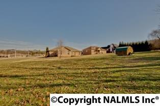Lots and Land - HARVEST, AL (photo 2)