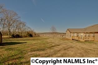 Lots and Land - HARVEST, AL (photo 4)