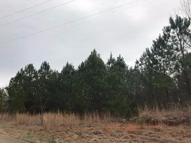 Lots and Land - Pontotoc, MS (photo 3)
