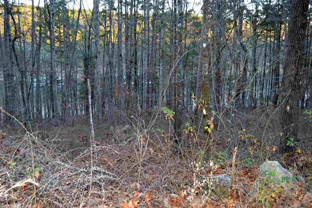 Lots and Land - Greers Ferry, AR (photo 3)