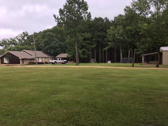 Residential/Single Family - Smithdale, MS (photo 3)