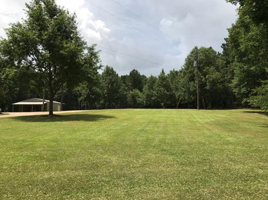 Residential/Single Family - Smithdale, MS (photo 5)
