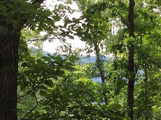 Lots and Land - Walland, TN (photo 2)