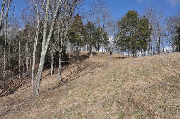 Lots and Land - Thorn Hill, TN (photo 1)