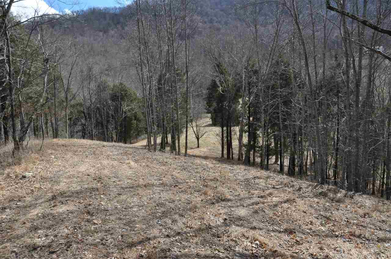 Lots and Land - Thorn Hill, TN (photo 5)