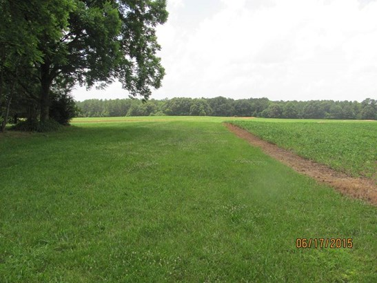 Lots and Land - Henderson, TN (photo 4)