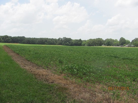 Lots and Land - Henderson, TN (photo 5)