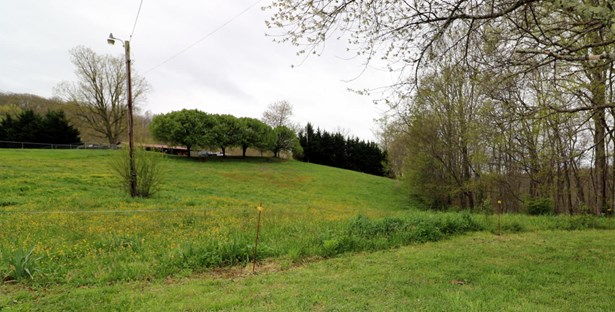 Lots and Land - Winfield, TN (photo 1)