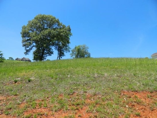 Lots and Land - Morristown, TN (photo 2)