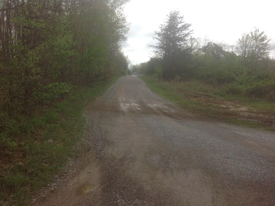 Lots and Land - Crossville, TN (photo 5)