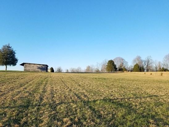 Lots and Land - Doyle, TN (photo 5)
