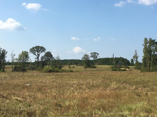 Lots and Land - Jayess, MS (photo 1)
