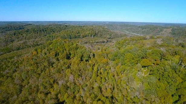 Lots and Land - Buffalo Valley, TN (photo 2)