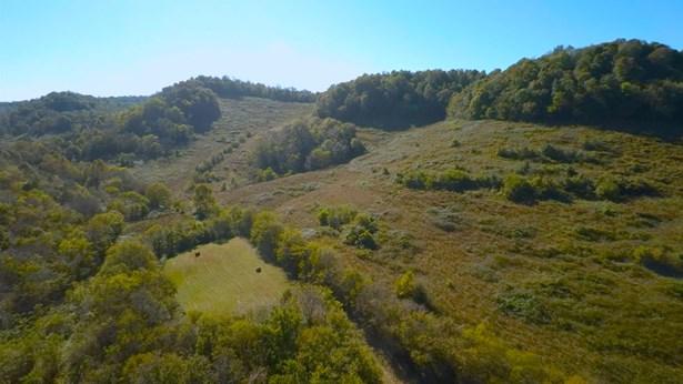Lots and Land - Buffalo Valley, TN (photo 3)