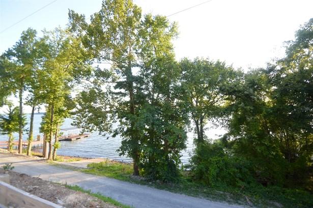 Lots and Land - Waverly, TN (photo 2)