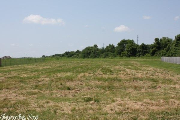 Lots and Land - Scott, AR (photo 1)