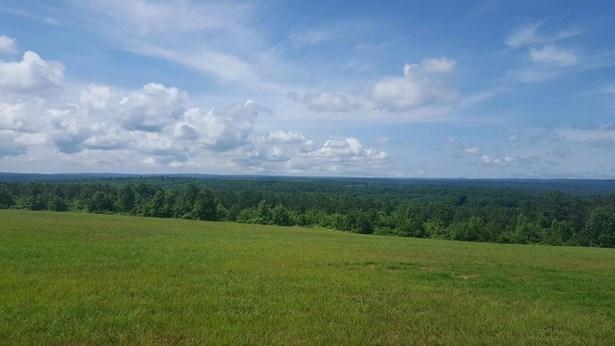 Lots and Land - Graysville, TN