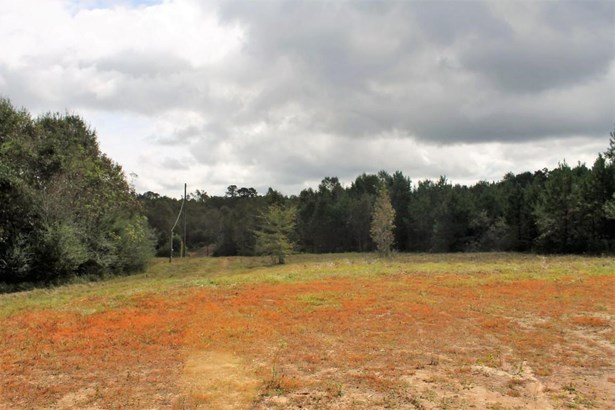 Lots and Land - Sumrall, MS (photo 1)