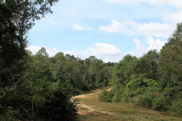 Lots and Land - Sumrall, MS (photo 2)