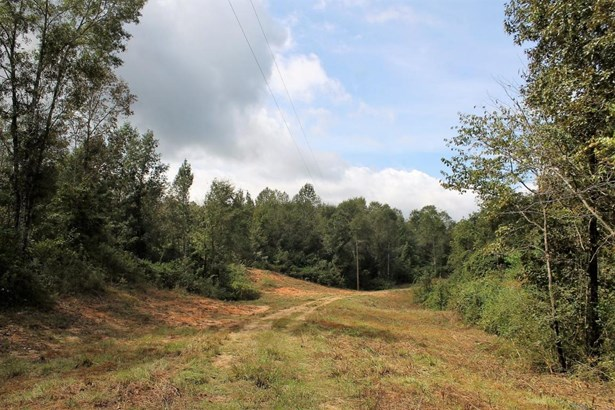 Lots and Land - Sumrall, MS (photo 5)