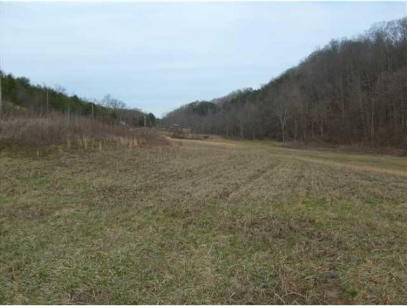 Lots and Land - Tazewell, TN (photo 5)