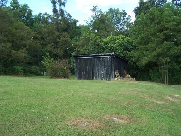 Residential/Single Family - Chucky, TN (photo 4)