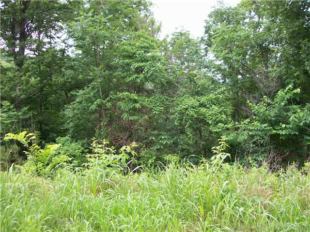 Lots and Land - Lynnville, TN (photo 4)