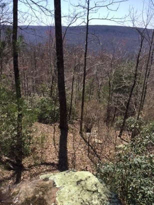 Lots and Land - Monterey, TN (photo 5)