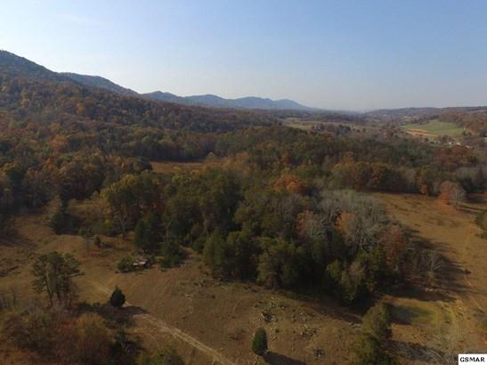 Lots and Land - Washburn, TN (photo 5)