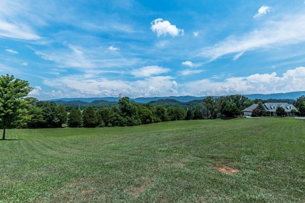 Lots and Land - Maryville, TN (photo 5)