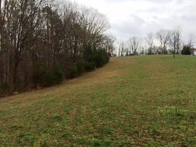 Lots and Land - Dunlap, TN (photo 2)