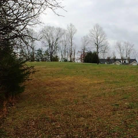 Lots and Land - Dunlap, TN (photo 3)