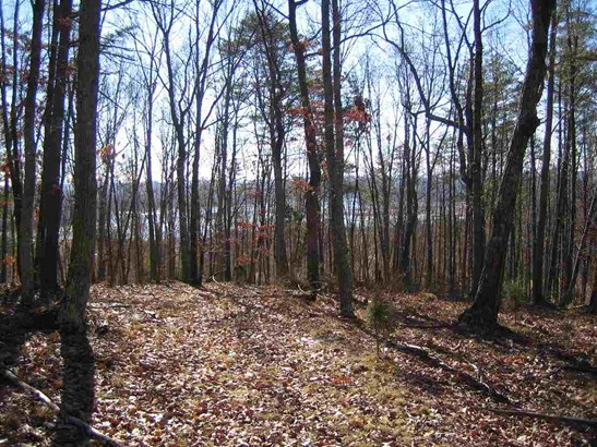 Lots and Land - Mooresburg, TN (photo 1)
