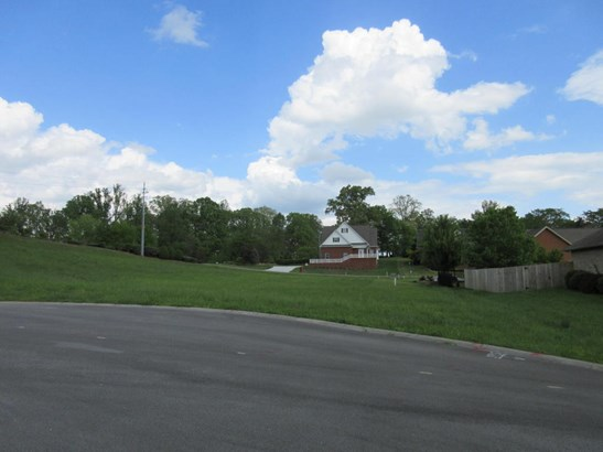 Lots and Land - Sevierville, TN (photo 2)