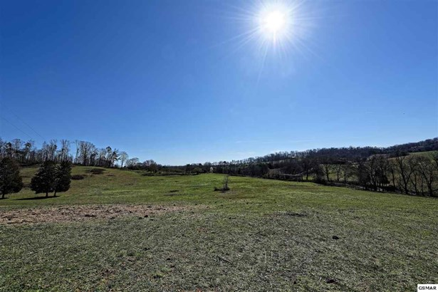 Lots and Land - Rutledge, TN (photo 5)