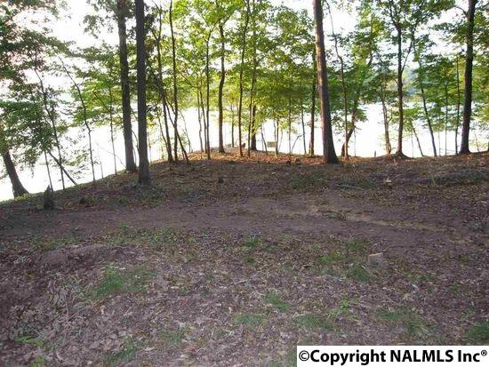 Lots and Land - SCOTTSBORO, AL (photo 2)