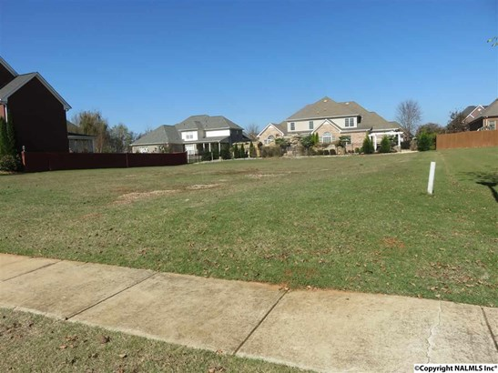 Lots and Land - HUNTSVILLE, AL (photo 3)