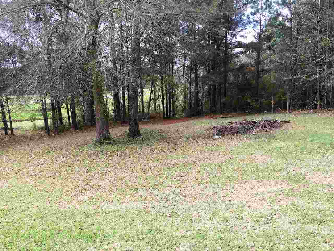 Residential/Single Family - Carthage, MS (photo 4)