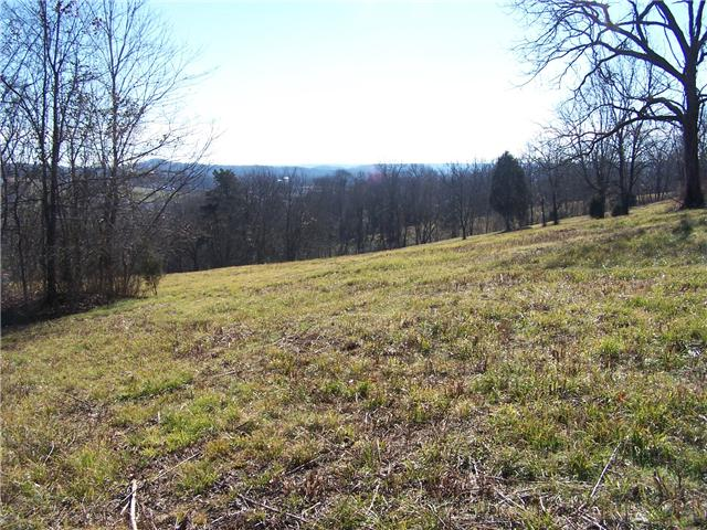 Lots and Land - Pulaski, TN (photo 2)