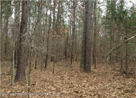 Lots and Land - Red Banks, MS (photo 1)