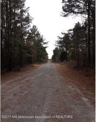 Lots and Land - Red Banks, MS (photo 3)