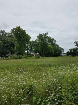 Lots and Land - Chattanooga, TN (photo 4)