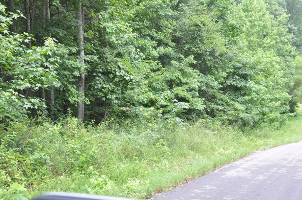 Lots and Land - South Pittsburg, TN (photo 4)