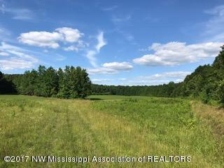 Lots and Land - Ashland, MS (photo 1)