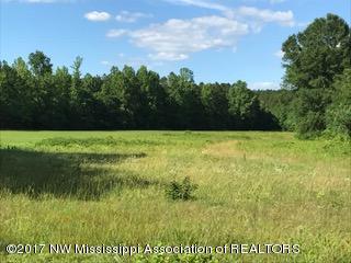 Lots and Land - Ashland, MS (photo 4)
