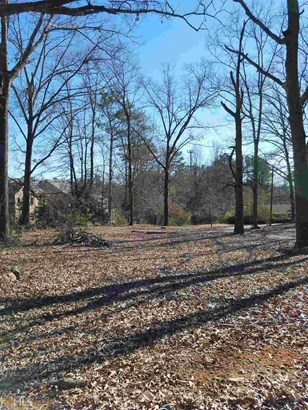 Lots and Land - Mableton, GA (photo 2)